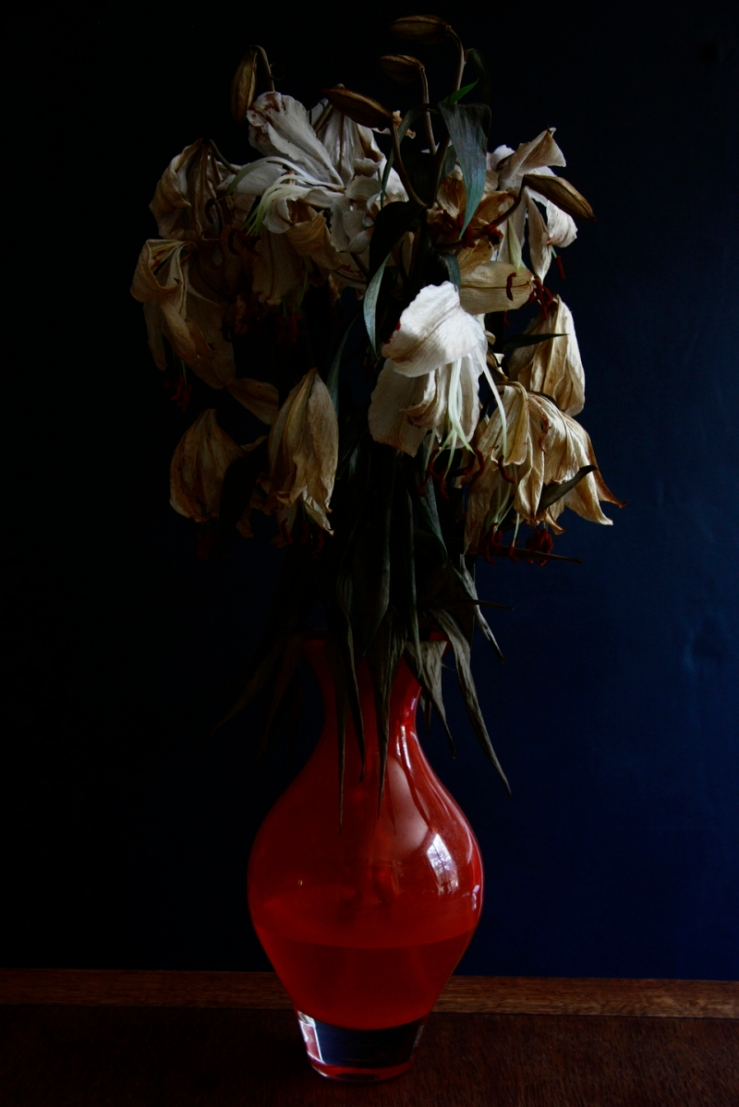 withering lilies